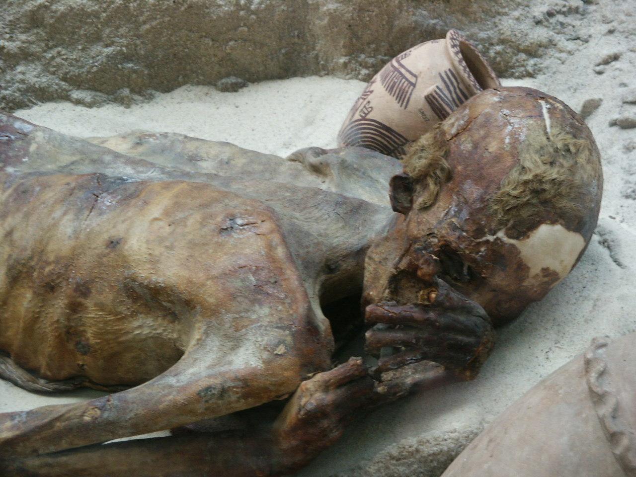Casi di morti che non si decompongono