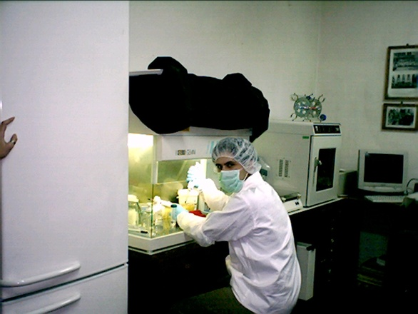 Create proteine cura del cancro