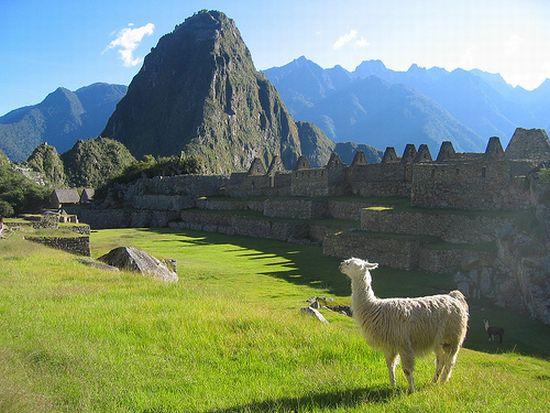 Principali malattie da contrarre in viaggio America Latina