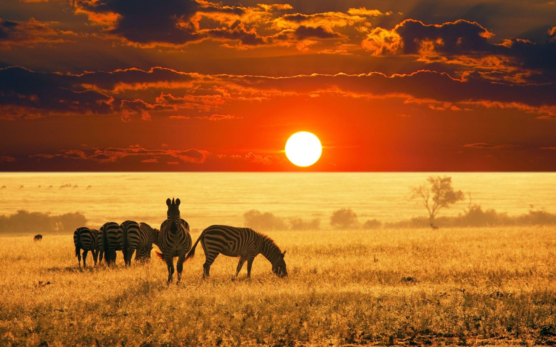 Principali malattie da contrarre in viaggio Sud Africa