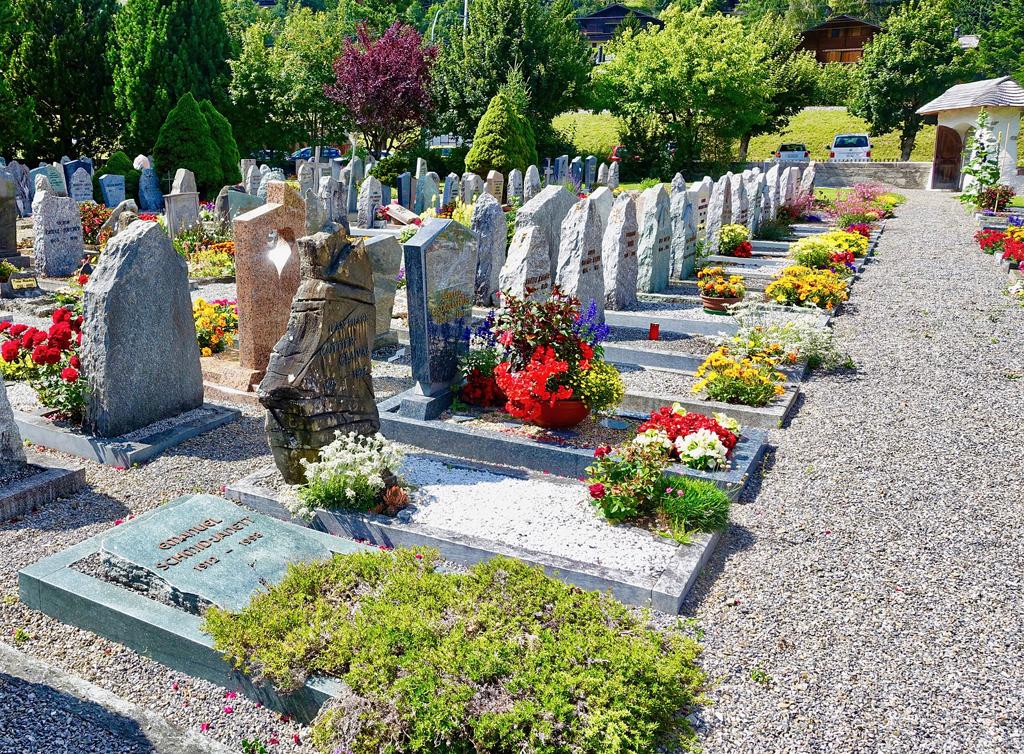 Come abbellire la tomba del caro estinto? Quali sono le migliori piante sempreverdi da mettere a dimora al cimitero?